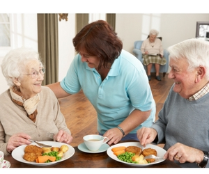Using CCTV for carers or the elderly